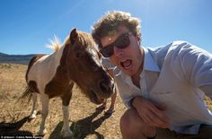 A brown and white pony tentatively comes closer to inspect what Allan is doing with the front-facing camera