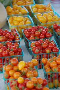 Woodland Tomato Festival August 11, 2012 - Now, that's a festival I can't wait to go to.