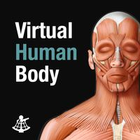 Virtual Human Body Explore the human anatomy from head to toe and from skin to bones with the Virtual Human Body, a lifelike human model combined with an anatomical dictionary. School Exhibition, Science Education, Human Anatomy, New Things To Learn, Educational Technology, Human Body, Biology, Health Care, Bones