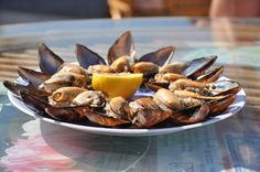 ... / Stuffed Mussels on Pinterest | Mussels, Istanbul and Street Food