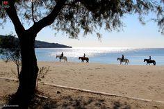 Damnoni beach, Crete island ~ Greece