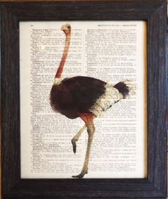 Ostrich mixed media print on an vintage french dictionary page, dictionary ostrich print for your wall (15). $8.95, via Etsy.