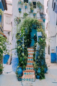 Debunking magic myths, sharing history, giving transportation tips, fun facts, and restaurant recommendations from my trip to Morocco's Blue City - Chefchaouen (شفشاون).