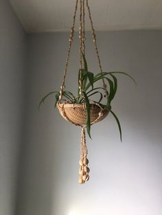 bohemian basket seashell hanging planter. vintage shell