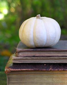 White pumpkin and old books