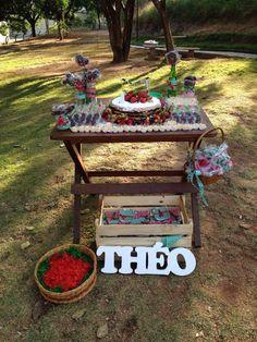 Festa no Parque - Aniversário Piquenique do Théo ~ Mamãe Sortuda
