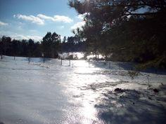 Ice Storm 2011...