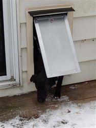 1000 images about wall mounted pet doors on pinterest - Installing a dog door in an exterior wall ...