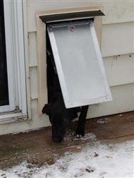1000 Images About Wall Mounted Pet Doors On Pinterest Pet Door Pets And Doors