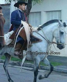 Horses, Animals, Bonn, Animales, Animaux, Animal, Animais, Horse