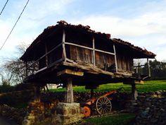 Este es el horreo de mis abuelos paternos en Sograndio. Lamentablemente cuesta una fortuna restaurarlo. No se que hacer..