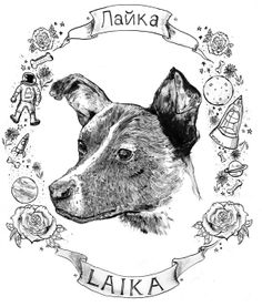 Laika died for science. Soviet Art, Soviet Union, Apolo Xi, Laika Dog, Japanese Tiger Tattoo, Space Hero, Dog Memorial, Dog Art, Vintage Art
