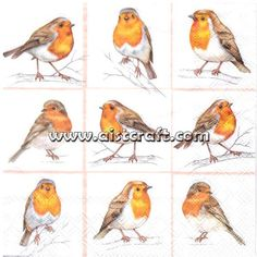 Robins Family Robin Paper Napkin Serviette For Decoupage Scrapbooking Paper Crafts Best Picture For Decoupage table For Your Taste You are looking for something, and it is going to tell you exactly wh Watercolor Bird, Watercolor Paintings, Robin Vogel, Robin Tattoo, Paper Napkins For Decoupage, Decoupage Table, Robin Bird, Bird Pictures, Robin Pictures