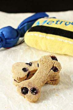 homemade peanut butter blueberry dog treats Dog Cookies, Blueberry Recipes For Dogs, Blueberry Dog Treat Recipe, Divinity Candy, Oat Flour, Rolled Oats, Food Processor, Blueberries, Dog Treat Recipes