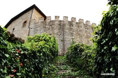 The castle #Montegiove
