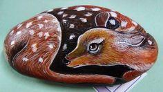 Cerbiatto