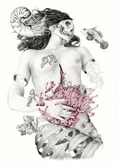 Metamorfish de Elisa Ancori  #ilustracion