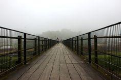 ponte-nevoa-neblina-Paranapiacaba