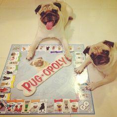 pipi & pakpak playing pug-o-poly!