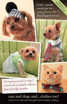 DIY Dog Accessories - Craft a quirky wardrobe for your favorite four-legged friend.