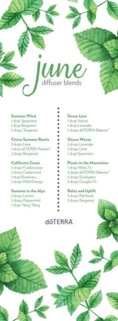 doterra summer diffuser blends by lenora