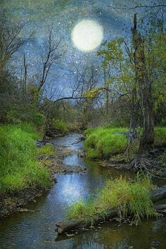 # Moon Over The Creek - Ron Germundson -- (summer night, full moon, art, illustration) Stars Night, Good Night Moon, Beautiful Moon, Beautiful Places, Beautiful Pictures, Amazing Places, Ciel Nocturne, Moon Dance, Moon Pictures