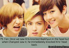EXO FACT ♡ #KPOP - 79