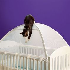 A Crib Tent | 21 Inane Baby Products For Questionable Parents....So the cat doesn't eat your baby. [ HGNJShoppingMall.com ] #nursery