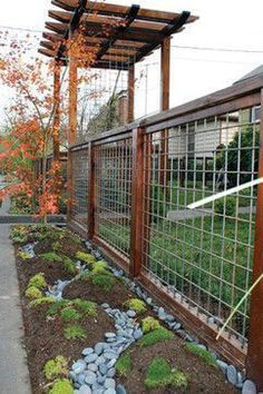 Raised beds how to build a hog wire fence ideas metal vines hog wire fence dogs hog wire fence gate railing modern hog wire fence plans garden design Cattle Panel Fence, Hog Wire Fence, Cattle Panels, Deer Fence, Front Yard Fence, Fence Gate, Wood Fences, Hog Panel Fencing, Metal Fence