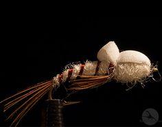 Crippled Mayfly: Den store klekkende Ephemera danica, et must å ha i flueboksen! http://fluefiskefluer.no/dagens-flue-crippled-mayfly/