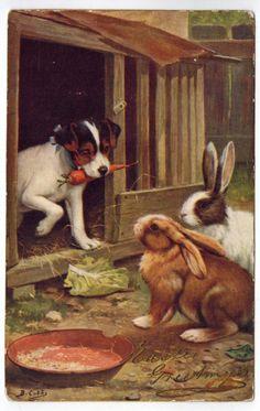 Antique Dog Easter Tucks Postcard A s Cobb Terrier Pup Rabbits Bunnies DB | eBay