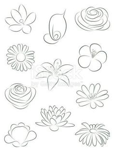 Flower Drawings Set of flowers. royalty-free set of flowers vector illustration stock vector art