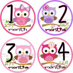 MONTHLY ONESIE STICKERS - Onesie Stickers,  Baby Shower - 1- 12 Months Precut - Waterproof - Milestone stickers, - Girl - Owl, bird