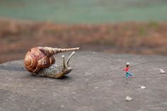 Sticking with his traditional layout and style, Slinkachu has used London parks and locations to create scenes of war and violence amongst children's play areas. Description from fashion156.com. I searched for this on bing.com/images