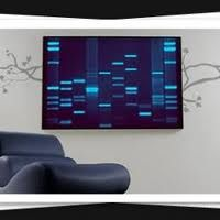 The world's original DNA Art portraits printed on canvas as personalized artwork from your DNA and fingerprints. The perfect unique gift as seen on BBC and CNN Dna Kunst, Dna Art, Unique Sofas, Leather Sectional Sofas, Mid Century Modern Sofa, Science Geek, Sofa Styling, Contemporary Sofa, Cool Stuff