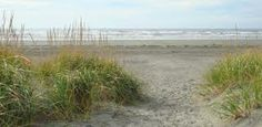 Grayland Beach State Park WA Yurt 118 is highly rated