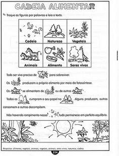 Professora Marlene Silva: ATIVIDADES DE CiÊNCIAS 4... CADEIA ALIMENTAR, CÉLULAS, TECIDOS, SISTEMA ESQULÉTICO, SISTEMA MUSCULAR E SISTEMA NERVOSO...