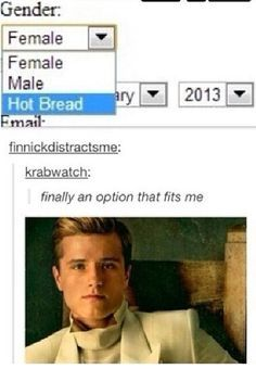 I don't even like the Hunger Games that much, but I laughed way hard. Hunger Games Memes, The Hunger Games, Hunger Games Fandom, Hunger Games Trilogy, Tumblr Funny, Funny Memes, Jokes, Movie Memes, 9gag Funny