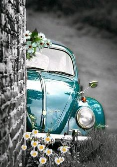 I need this outstanding volkswagen beetle Bmw Autos, Vw Vintage, Cute Cars, Jolie Photo, Vw Beetles, Old Cars, Cute Wallpapers, Color Splash, Dream Cars