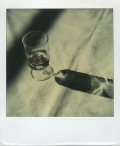 Bruce Silverstein Gallery - Estate of André Kertész: 1975-1985 : Polaroids
