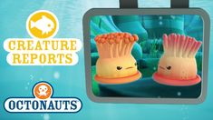 Image result for octonaut creature report Octonauts Party, Tray, Creatures, Image, Trays, Board