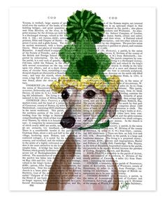 Loving this Greyhound in Green Knitted Hat Dictionary Print on #zulily! #zulilyfinds
