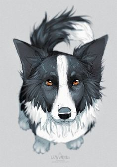Wonderful Cost-Free Border Collies australian shepard mix Thoughts A National boundaries Collie hails through the borderlands associated with The united kingdom plus Scotland (h. Animal Sketches, Animal Drawings, Cute Drawings, Dog Drawings, Cartoon Dog Drawing, Drawing Borders, Border Collie Art, Collie Dog, Border Collie Puppies