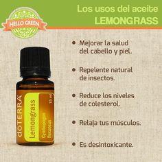 Te ayudará con la salud de tu cabello, piel y hasta ayuda a reducir los cólicos. Por su versatilidad el aceite esencial Lemongrass es uno de nuestros favoritos.