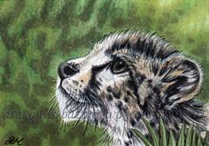 ACEO Original art animal wild cat cheetah eyes miniature illustration - SMcNeill  #aceo #art #eBay #dog