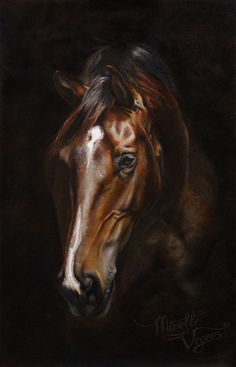 """""""Miss"""" - commissioned equine artwork - oil on linen by Mirelle Vegers- 2016 Reference photography by Nikki de Kerf Pretty Horses, Horse Love, Beautiful Horses, Horse Photos, Horse Pictures, Arte Equina, Watercolor Horse, Horse Oil Painting, Photo Animaliere"""