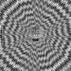 can't stop staring...>> IT'S MOVING!!! IT SHOULDN'T BE MOVING!!!!!