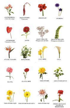 El nombre de las flores