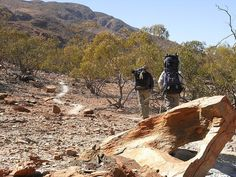 The Larapinta trail, located in the Northern Territory is one of those ultimate hiking trails not to miss. Holiday Destinations, Travel Destinations, Australia Travel Guide, Camping Spots, Walkabout, Best Hikes, Best Places To Travel, Summer Travel, Plan Your Trip