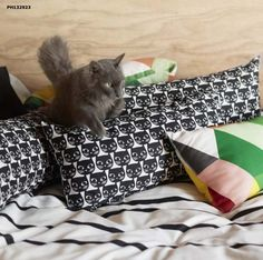 This cat-inspired pillow ($4) is too cute . . . and surprisingly chic?
